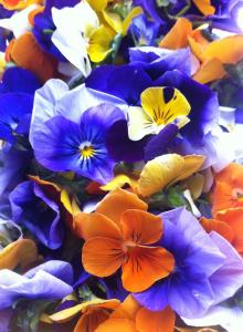 Flowerfetti 3